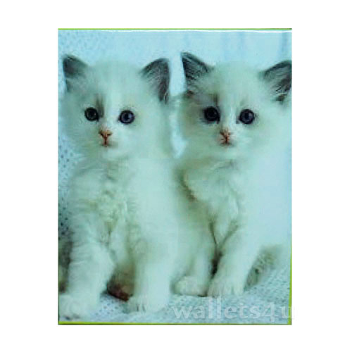 *Magic Wallet, Cats, White - MWAP0070
