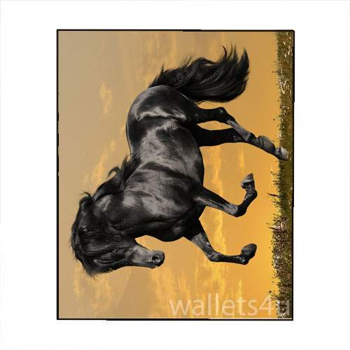 Magic Wallet, Horse, Black, Galloping - MWAP0098