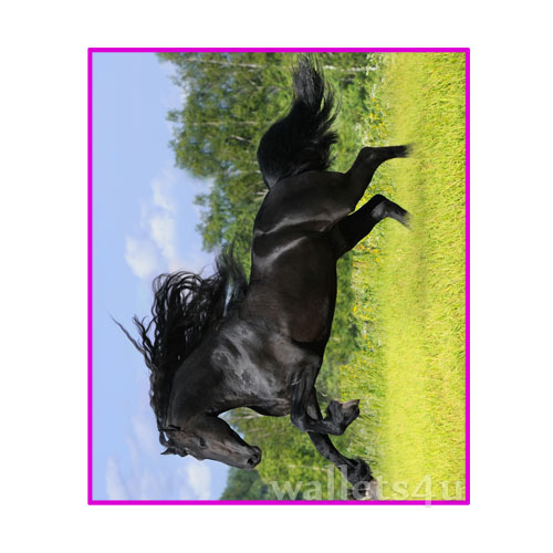 Magic Wallet, Horse, Black - MWAP0096