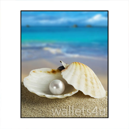 Magic Wallet, Shell, Pearl - MWAP0105